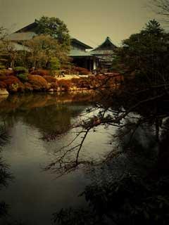 輪王寺のお庭をToyCameraで撮影。昭和30年代って感じ